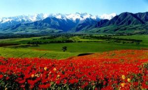 kyrgyzstan07